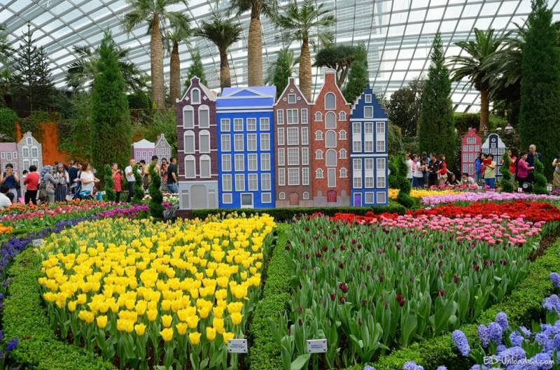 Garden By The Bay Flower Festival gardenthe bay - gotravelly